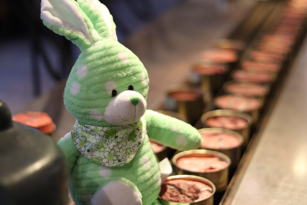 Easter bunny doll sitting on salmon cans
